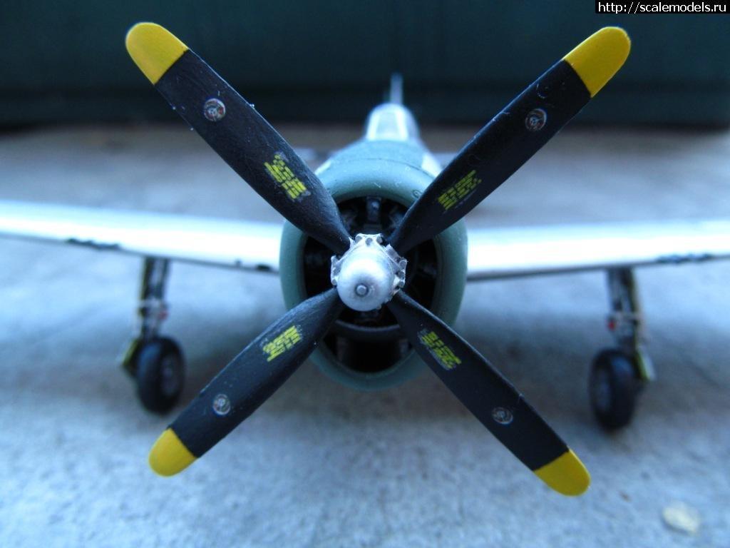 #703139/ P-47D Thunderbolt Tamiya 1/72 (Обсуждение) Закрыть окно