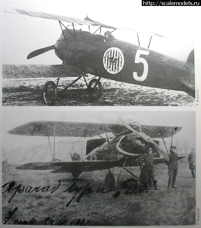 БЕЛЫЕ - Polish Albatros DIII - 1/72 ГОТОВО Закрыть окно